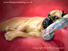 """A Quick Nap"" - Bull Mastiff (artwork by Denise Laurent)"