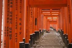 The head shrine of Inari, the fox god and one of the most prevalent kami in Shintoism. The path leading to the inner shrine is lined with thousands of torii.