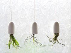 Make hanging plants for in your bathroom! #DIY #Gardening