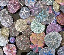 colorful painted sand dollars