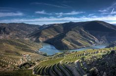 10 of the most beautiful places to visit in Portugal - via Global Grasshopper Photo: Douro Valley Douro Portugal, Visit Portugal, Portugal Travel, Spain And Portugal, Best River Cruises, River Cruises In Europe, Douro Valley, Beautiful Places To Visit, Beautiful Sites