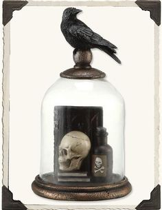 EDGAR'S NEVERMORE BELL JAR. I like the arrangement of books and bottles.