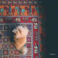 In continuance of our Persian cats on Persian rugs theme, Richard Afkari Carpets & Rugs presents to you a magic carpet-riding cat!  #persian #rug #persiancat #cat #catmeme #rugsinnyc #persiancats #antique #petsonrugs #magic #magiccarpet #carpets #interiordesign #interiordecor #interiordecoration #interiordesigner #rugs #designer #decorator #architect #beauty #oriental #inspiration #rugart #interiors #homedecor #luxury #luxurylife #luxuryliving #designs  www.rugsinnyc.com…
