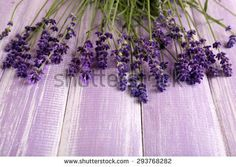 Lavender flowers on table close up - Shutterstock