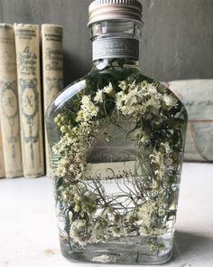 ※5-1 Flower Bottle, How To Preserve Flowers, Dried Flowers, Terrarium, Flower Arrangements, Flora, Candles, Rose, Plants