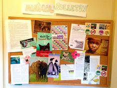 Seven ideas for making your classroom the most animal-friendly one around! #TeachKind #Teachers #ClassroomDecor #ClassroomIdeas #Animals
