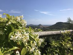 Perfect wedding location in Sardinia - view out across to Posada from this stunning agritourismo