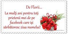 De Florii ... La multi ani pentru toti prietenii mei de pe facebook care isi sarbatoresc ziua numelui! Happy Valentine's Day Friend, Happy Valentines Day, Special Events, Letter Board, Facebook, Victoria, Birthday, Google, Image