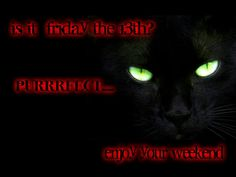 Friday The 13th Quotes, Enjoy Your Weekend, Movie Posters, Movies, Films, Film Poster, Cinema, Movie, Film