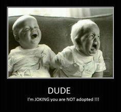 Made me laugh -