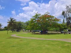 Camerhogne Park to be Relocated