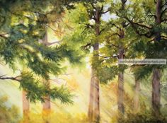 Original Fine Art Painting Watercolor Landscape 15x22 America Forest Signed COA