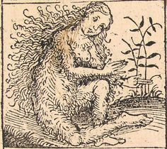 Nuremberg chronicles - Strange People - Hairy Lady (XIIv) - Category:Nuremberg Chronicle illustrations f - Wikimedia Commons Medieval Drawings, Medieval Art, Hairy Women, Legendary Creature, Historical Images, Gravure, Mythical Creatures, Occult, Beast