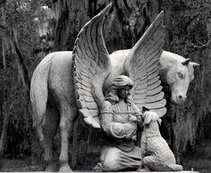 anjo e o cavalo