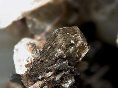 Polylithionite, Mont Saint-Hilaire, Quebéc, Canada.  Fov 4 mm.  Copyright: Stephan Wolfsried