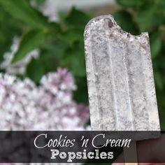 Cookies 'N Cream Popsicles! Click for the super easy recipe! #Popsicle #Recipe