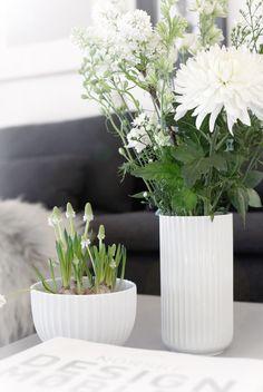 White-Lyngby.jpg 700×1045 pikseliä