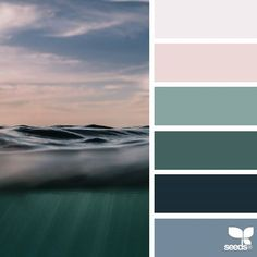 today's inspiration image for { color level } is by @piiipsy ... thank you, Maruša, for another incredible #SeedsColor image share!