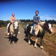 I miss my friends #holydays #animalfriends #friends #horses #panda #athol #jersey #jerseyisland #sky #ride