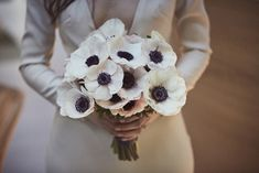 You don't always have to mix flowers to create a stunning bridal bouquet. This beautiful bouquet of all clustered white anemone. Photography by Love Liz Photography Corsage Wedding, Flower Bouquet Wedding, Floral Wedding, Anemone Bouquet, Rose Bouquet, Anemones, Theatre Wedding, White Anemone, Sydney Wedding