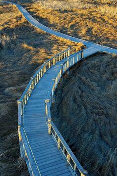 Great Salt Lake Shorelands Preserve - Salt Lake City, Utah;  photo by Zhou Yu, via 500px