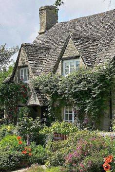 Ivy covered cottage in England with beautiful cottage garden.
