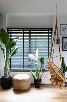 Wooden venetian blinds from JASNO will help you create a unique atmosphere in every room in your home. Wooden blinds make it easy for you to play with sunlight and shadow. Log Cabin Furniture, Dining Room Furniture, Home Furniture, Living Tv, Home And Living, Style At Home, Black Blinds, Store Venitien, Living Room Blinds