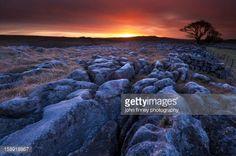 limestone pavement sunrise - Google Search