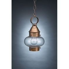 Northeast Lantern Onion 1 Light Outdoor Hanging Lantern Finish: Antique Brass, Shade Type: Clear Seedy