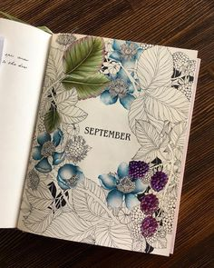 colouring book (@daphnesgallery)