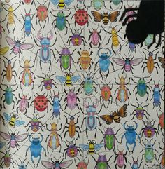 Décimo oitavo colorido do livro Jardim Secreto. #jardimsecreto #insetos