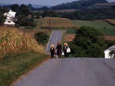 Amish children walking home from school