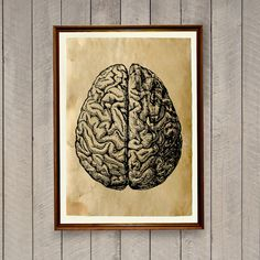 Nice brain anatomy poster printed on aged paper. Antique style anatomical print. Creepy macabre decor for home and office. SIZE: 8.3 x 11.7 (A4) Paper