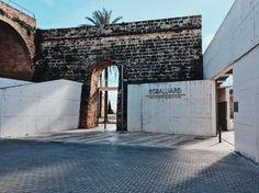 Es Baluard ist das neue Museum der Stadt Palma für moderne und zeitgenössische Kunst. In der katalanischen Sprache bedeutet baluard Bollwerk und verweist so auf die Lage und die historische Funktion des an dieser Stelle ursprünglich gelegenen Bauwerks. Im Namen Es Baluard schwingt auch die Bedeutung eines Bollwerks der Kunst mit. #esbaluard #palma #palmademallorca #mallorca2017 #latergram #artwatchers #museum #contemporaryart #travelgram #travelling #traveltheworld #wanderlust Modern, Wanderlust, Instagram Posts, Contemporary Art, Names, Language, Majorca, City, Trendy Tree