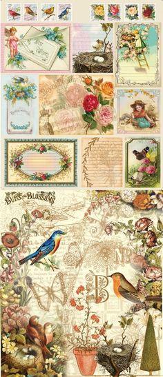 Bird and bloom paper scraps