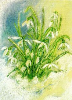 Sneeuwklokjes - Marjan van Zeyl. Kaart
