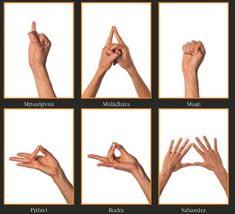 Description of various Mudra and how the position of your hands affects energy during meditation.