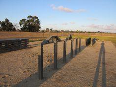 Green Gully Reserve Dog Park Dog Enrichment, Local Parks, Dog Park, Dogs, Green, Pet Dogs, Dog Runs, Doggies
