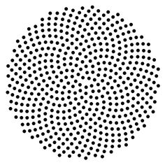 A model for the pattern of florets in the head of a sunflower was proposed by H. Vogel in 1979.