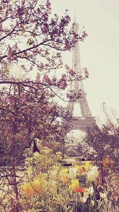 will live in Paris when i grow up. I will see the Eiffel Tower every day. i will be able to take this picture myself someday in the future! i love paris and the eiffel tower! Paris In Spring, Springtime In Paris, Paris 3, Louvre Paris, I Love Paris, Paris Cafe, Paris Girl, Oh The Places You'll Go, Places To Travel