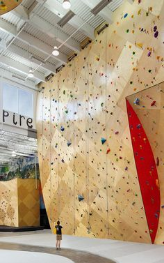 Brooklyn Boulders Somerville / At This Coworking Space In A Climbing Gym, You Can Do Pull-Ups At Your Standing Desk
