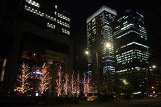 Around the Tokyo stasion