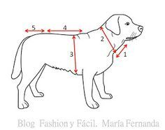 Fashion y Fácil DIY: ¿Cómo tejer ropa para perros a ganchillo paso a paso? PAP para tejer vestidos perritas. (How to make crocheted dog dres...