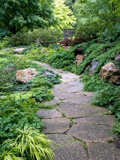 Don't Be Afraid of the Dark Six principles for successful shade-garden design.