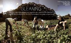"#2 ""Gleaning"" by Douglas Gayeton, via 500px"