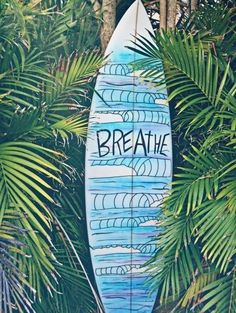 Surf board ~ Summer ☀