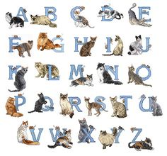 Vermillion Stitchery Home Format Fonts Embroidery Fonts: Cat Alphabet 4.00 inches H
