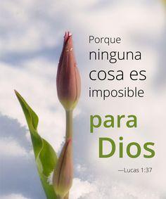 Lucas 1:37 Lo que saben los ángeles de IHWH.  Entender en el contexto de Marcos 9:23