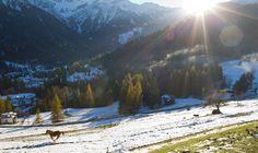 RUNNING AT THE SUNSET_Falcade_Italy