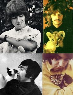 George Ringo John and Paul. And kitties. I hear my childhood filled with Beatles music and kitty cats. Crazy Cat Lady, Crazy Cats, The Beatles, Celebrities With Cats, Celebs, Photoshop Celebrities, Smoking Celebrities, Hollywood Celebrities, Hollywood Actresses